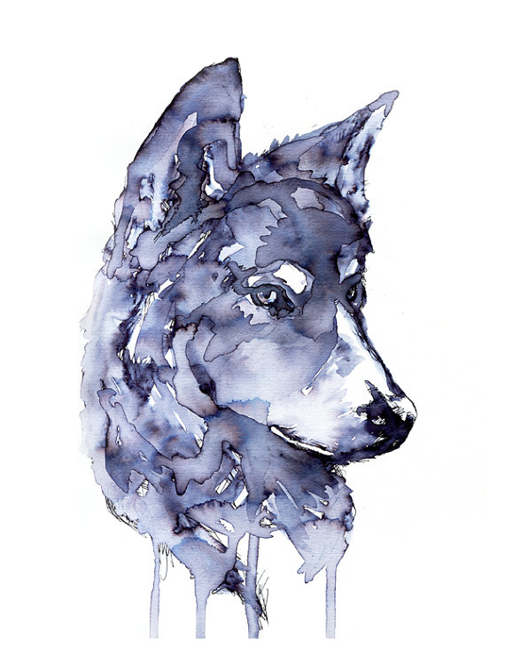 Gray Wolf. Ink