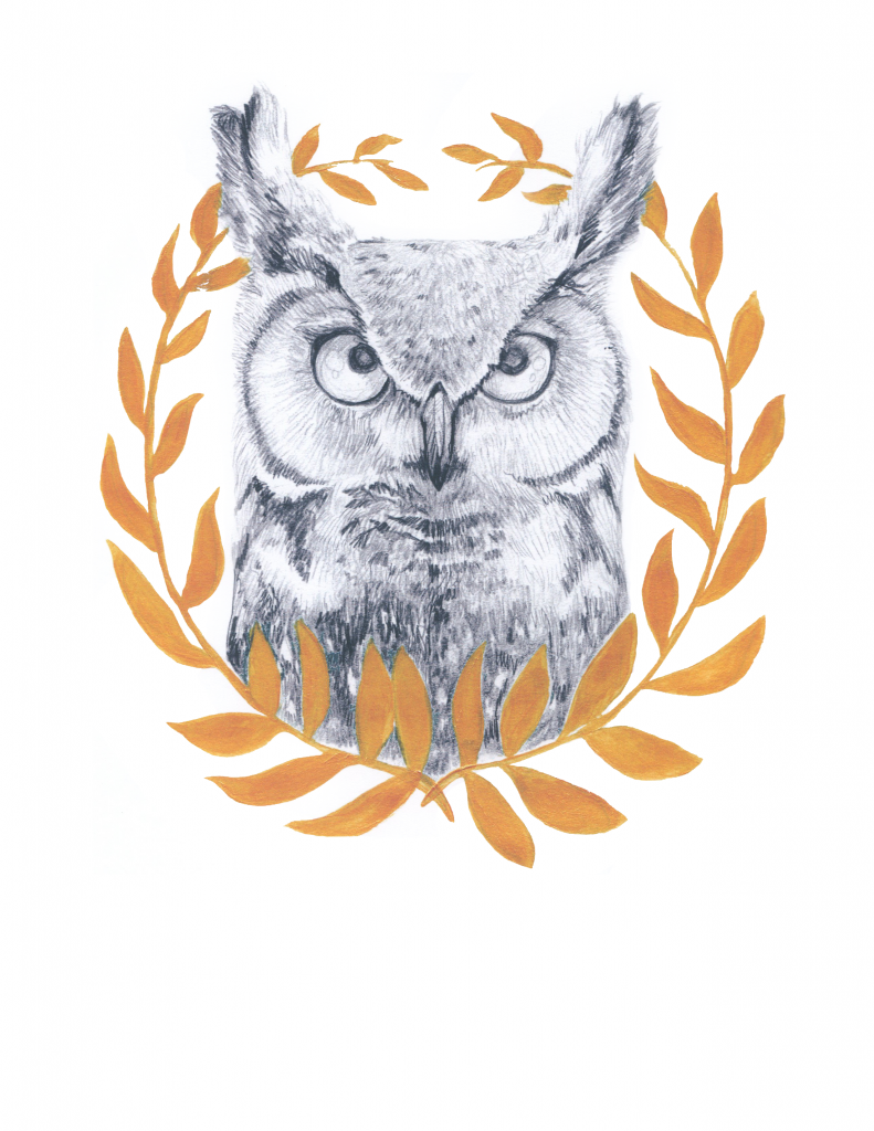 Wise Old Owl. Pencil and Gold paint