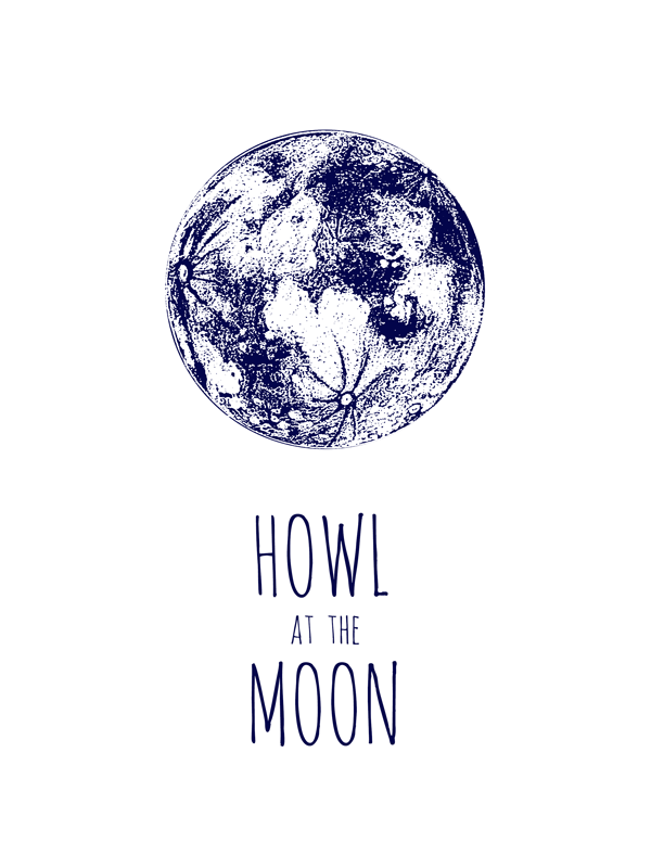 moon illustration by fin and feather art