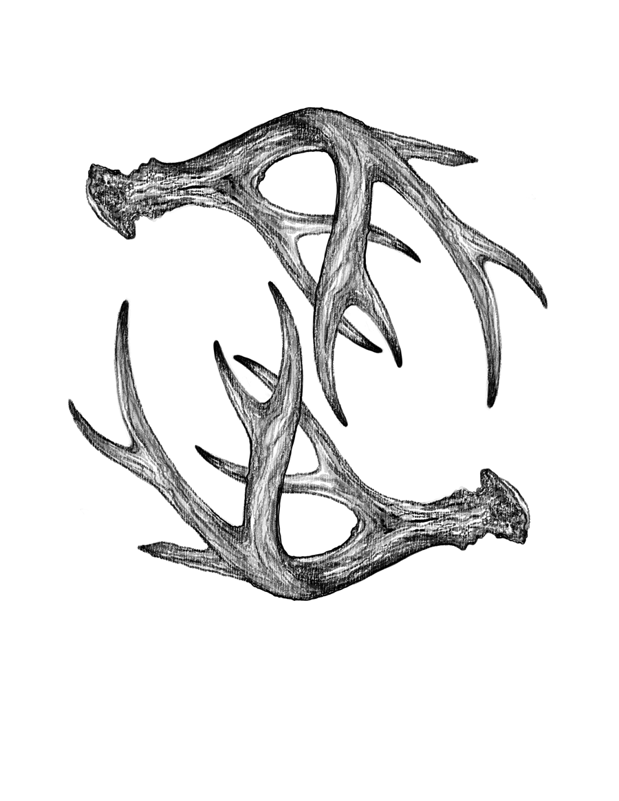 antler illustration by Fin and Feather Art